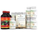 Jus d'herbe de blé en poudre