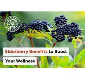 Pantoufles conductrices pour le VariZapper